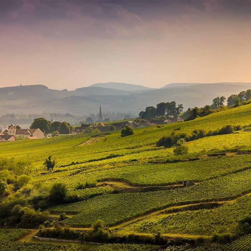 Bourgogne vue du ciel